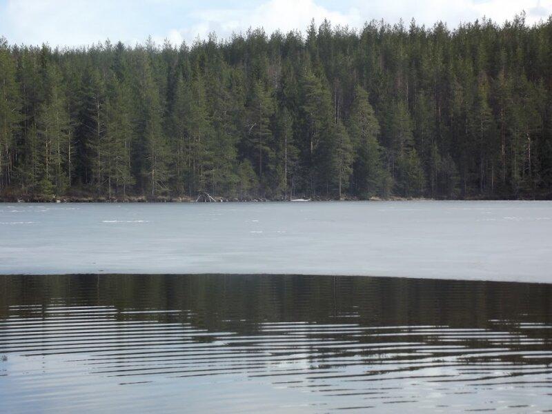 Еще один вид на весеннее озеро