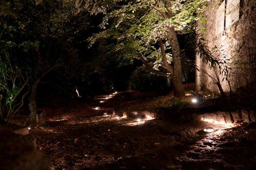 Дорога в ночном Старом Баре