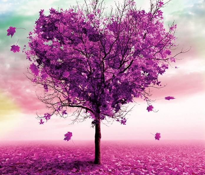 Дерево любви – картина со стразами. Фото готовой алмазной вышивки