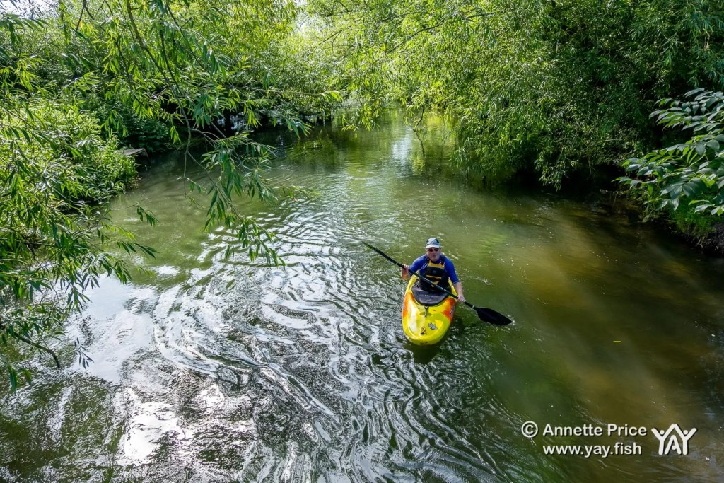 A kayak paddler enjoying St Patrick's Stream, near Shiplake, UK.