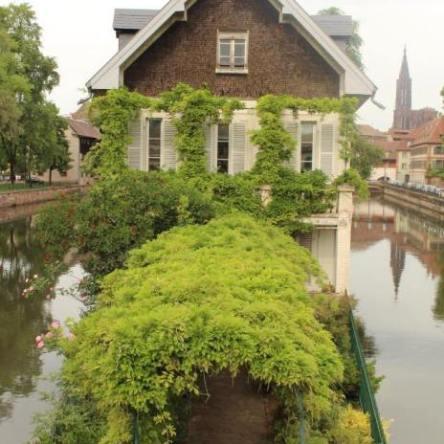Strasbourg Gezisi