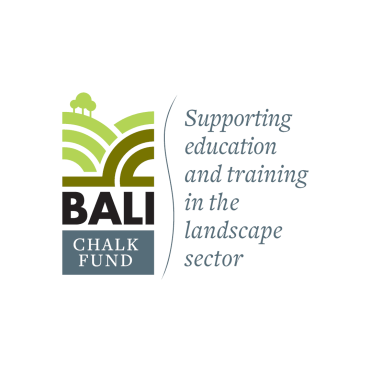 BALI Chalk Fund Logo Design