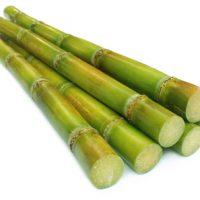 Sugar cane over white background