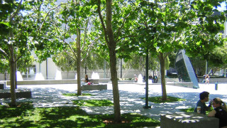 Photo of the Upper East Garden at Yerba Buena Gardens