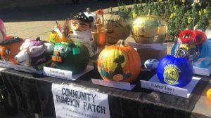 Photo of 2015 Yerba Buena Pumpkin Patch