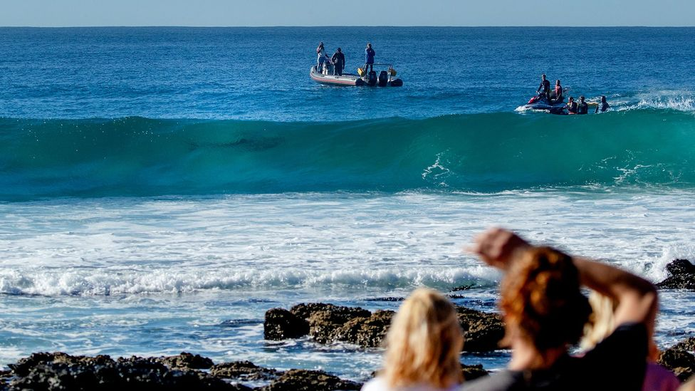 Many areas now operate shark patrols to spot sharks before they enter areas used by swimmers and surfers so they can be alerted (Credit: Getty Images)