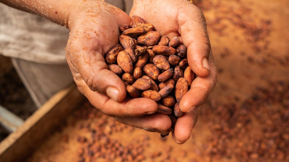 The chocolate we enjoy today is a much more processed and refined food than the one enjoyed by the Aztecs centuries ago (Credit: Mauricio Palos/Bloomberg/Getty Images)