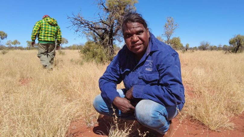 Newhaven's indigenous rangers have been instrumental in returning the land to its original state (Credit: Brad Leue/Australian Wildlife Conservancy)
