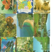Calendarios de bolsillo por series, casas, temas, años, etc..
