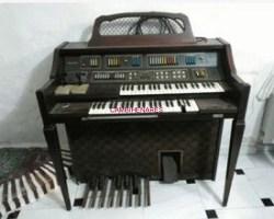 Organo Baldwuin