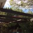 Vendo casa en Los Hueros con parcela 1000m