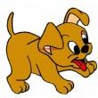 Deseo adoptar un perrito