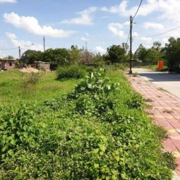 Residential Plot Available On Sale