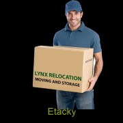 Lynx Relocation Packers And Movers in Ludhiana