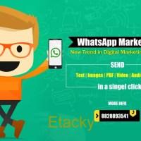 SMS MARKETING, E-MAIL MARKETING, WHAT'S APP MARKETING, SOCIAL MEDIA MARKETING, CUSTOMIZED WEBSITE