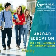 Overseas Education Consultants in Vijayawada | Study Abroad