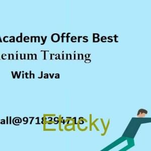 Selenium Training Institute in Noida- GVT Academy