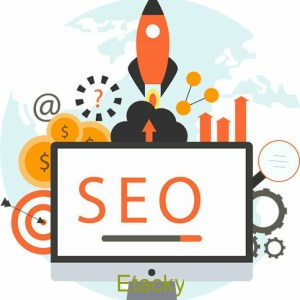 Get Rank your website in any search engine. Best Seo services in USA