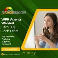 Work From Home (WFH) Digital Marketing for Credit Repair