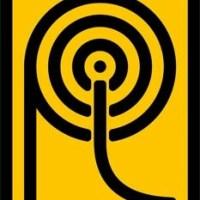 Pest control in Mohali , Chandigarh | Pestlogic India