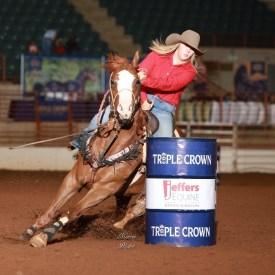 1d barrel horse!