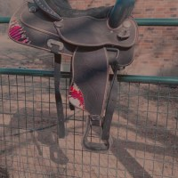 cute western saddle with tack set