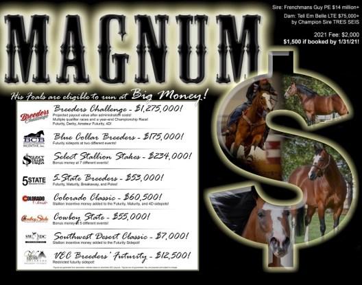 Magnum foal in utero
