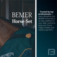 Bemer PEMF Therapy Service and Sales