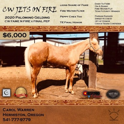 Yearly Prospect With FWF & Jet of Honor Papers!!!