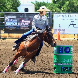 12yr old APHA barrel racing mare