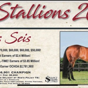 Embryo by TRES SEIS and out of AAA daughter of Dash To Chivato