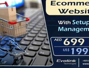Ecommerce Website AED 699 / Month
