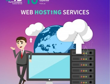 Web Hosting & Domain & FREE Support