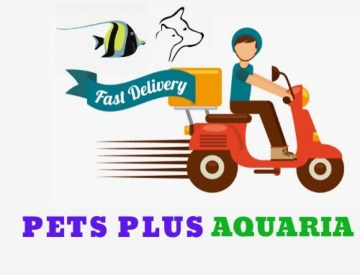 Pet Supplies and Pet Grooming Services
