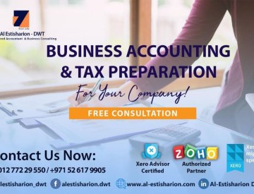 Business Accounting and TAX Preparation  Services