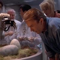 Velociraptor eggs