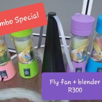 Blender and fly fan combo