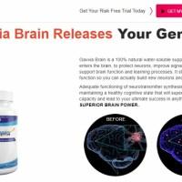 https://www.facebook.com/Gavvia-Brain-Enhancer-102950668561692