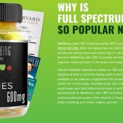 CBD Gummies:- https://www.benzinga.com/press-releases/21/03/wr20071041/well-being-cbd-gummies-customer-reviews-scam-alert-read-this-before-buy