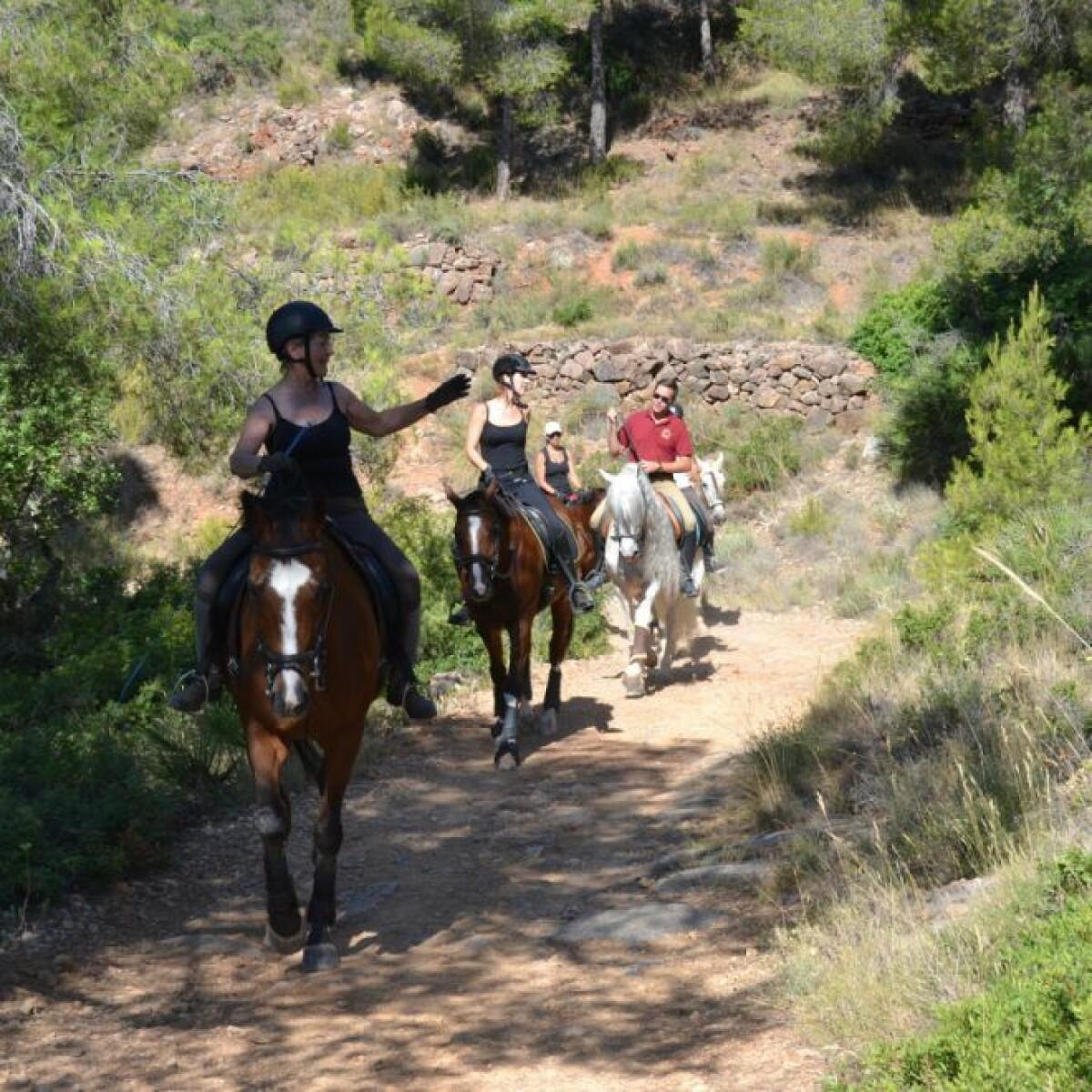 Rutas a caballo en Valencia