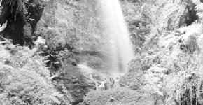 Caminando tras las aguas en La Palma