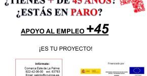 Apoyo al Empleo + 45