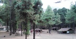 El Cabildo establecerá una red contra incendios para mejorar la seguridad de los usuarios y de las instalaciones del Refugio de El Pilar
