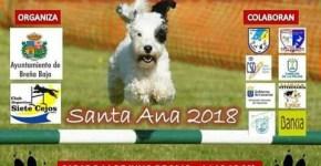 "Torneo de Agility ""Santa Ana 2018"""
