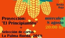 Festivalito en la Casa Amarilla