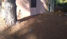 Casa sin finalizar con terreno y con vistas en Puntagorda
