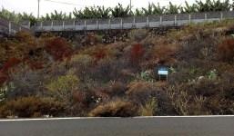Terreno rustico en Villa de Mazo, cerca al aeropuerto