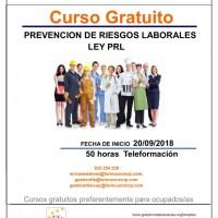 CURSO PREVENCIÓN DE RIESGOS LABORALES