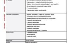 Oferta Laboral: Técnico de Empleo