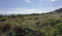 Terreno rústico (asentamiento rural en el nuevo plan) en San Simón, Villa de Mazo